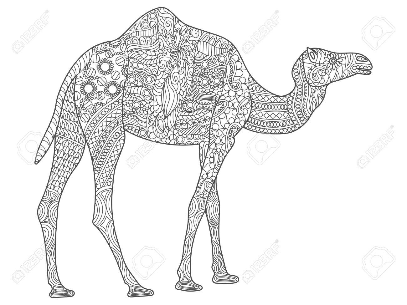 hand drawn coloring pages with camel illustration for adult anti stress coloring books or tattoos wi